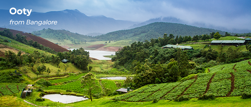 Best time to go on a road trip from Bangalore to Ooty: October–June