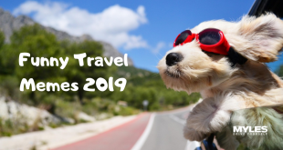 10 Funny Memes 2019 On Travel – Giggles Are Assured