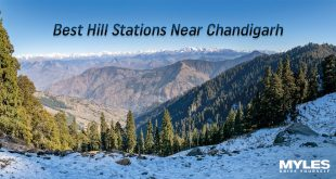 Best Hill Stations Near Chandigarh You Must Visit In 2020