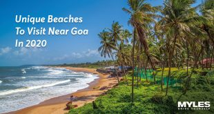 Best-Beaches-in-Goa
